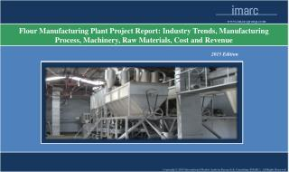 Flour Manufacturing Plant | Market Trends, Cost