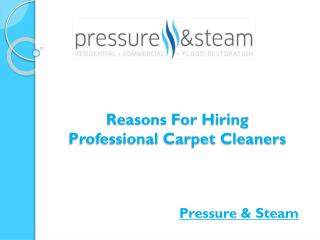 Reasons For Hiring Professional Carpet Cleaners