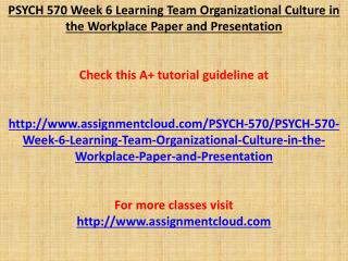 PSYCH 570 Week 6 Learning Team Organizational Culture in the