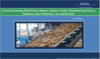 Cassava Processing Plant | Market Trends, Cost