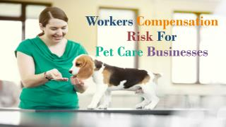 Workers Compensation Risk For Pet Care Businesses