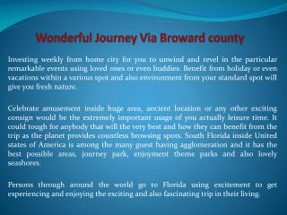 Wonderful Journey Via Broward county
