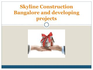 Skyline Construction Bangalore and developing projects