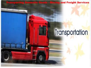 Transporting Domestic Goods - Moving and Freight Services