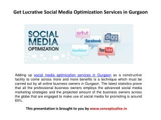 Get Lucrative Social Media Optimization Services in Gurgaon