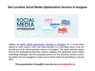 Get Lucrative Social Media Optimization Services in Gurgaon