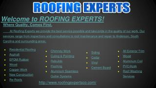 Roofing Contractor and Roof Repairs Company Savannah GA
