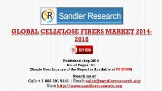 Cellulose Fibers Market to Grow at 9% CAGR to 2019 Insight R