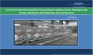 Corn Starch Manufacturing Plant | Market Trends, Cost