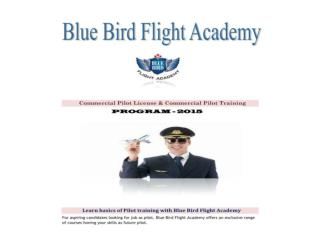 Pilot training,Commercial Pilot training - Blue Bird Academy