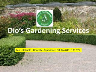 Professional Garden Maintenance Services in NSW, Australia
