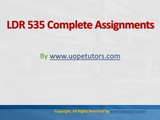 LDR 535 Complete Assignments