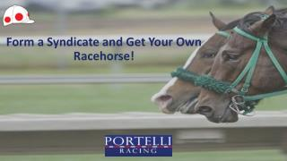 Form a Syndicate and Get Your Own Racehorse!