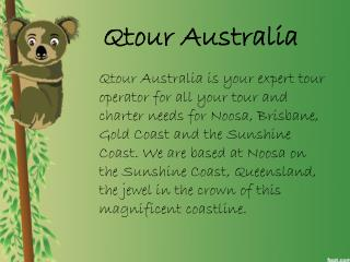 Qtour Australia - Australian Day Tours