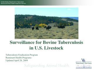 Surveillance for Bovine Tuberculosis in U.S. Livestock