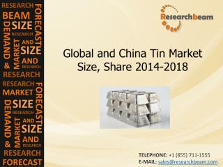 Global and China Tin Market Size, Share 2014-2018