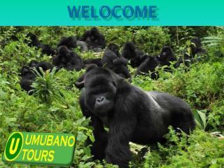 Travel to Rwanda