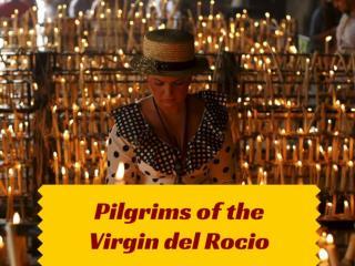 Pilgrims of the Virgin del Rocio