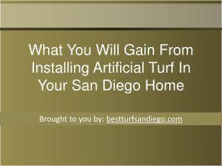 What You Will Gain From Installing Artificial Turf In Your S