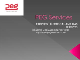 PEG Services