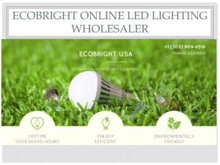 ecoBright Online Led Lighting Wholesaler