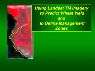 Using Landsat TM Imagery  to Predict Wheat Yield  and  to Define Management Zones