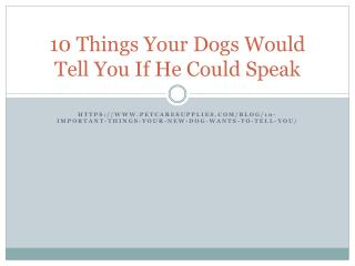 10 Things your dog tells you silently