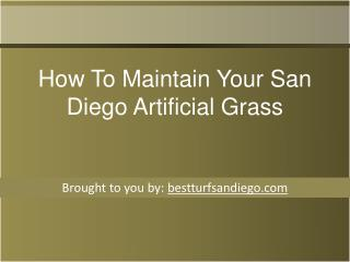 How To Maintain Your San Diego Artificial Grass