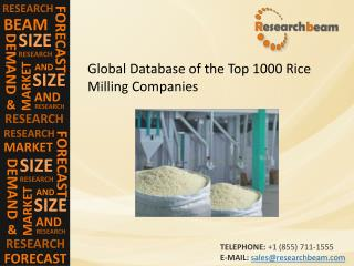 Global Database of the Top 1000 Rice Milling Companies