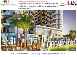 Rise Organic Homes @ 9560090037