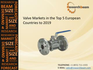 Valve Markets in the Top 5 European Countries to 2019