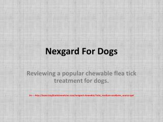 Nexgard dogs flea and tick control - overview