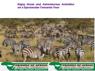 Enjoy Great Spectacular Tanzania Tour