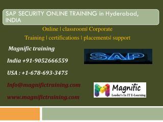 sap security online training