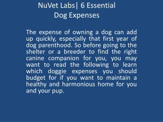 NuVet Labs: 6 Essential Dog Expenses