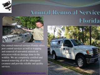 #Animal Removal Service Florida