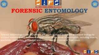 Advance Courses of Forensic Entomology - SIFS INDIA