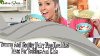Yummy And Healthy Dairy Free Breakfast Ideas For Toddlers An