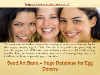 Seed Art Bank - Huge database for Egg donors