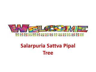 Salarpuria Sattva Pipal Tree Pre Launch