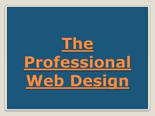 The Professional Web Design