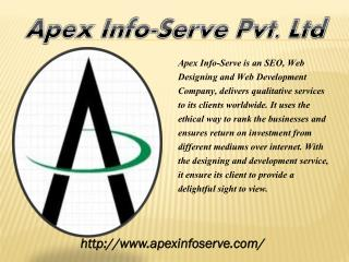 Florida SEO | Apex Info-Serve