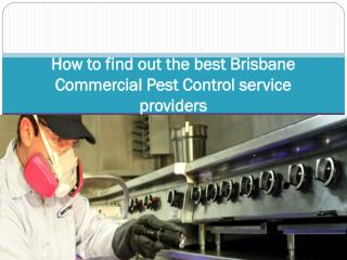 How to find out the best Brisbane Commercial Pest Control se