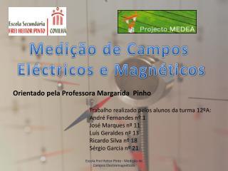 Medi  o de Campos  El ctricos e Magn ticos