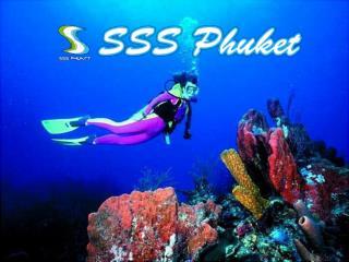 Surfing Phuket, www.sssphuket.com