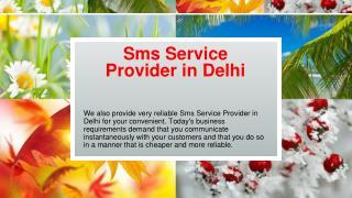 Sms Service Provider in Delhi
