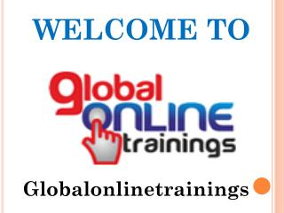 Globalonlinetrainings Offer Different Types Of Training