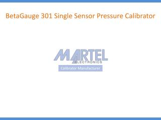 BetaGauge 301 Single Sensor Pressure Calibrator