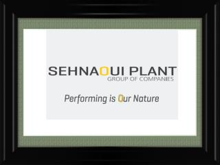 Sehnaoui Plant - Market Leader in Construction Equipment