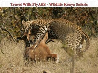 Travel With FlyABS - Wildlife Kenya Safaris